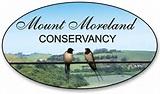 Barn Swallows Mount Moreland